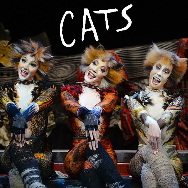 Cats Adelaide 2016